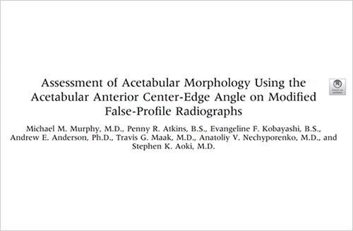 Assessment of Acetabular Morphology Using the Acetabular Anterior Centre-Edge Angle on Modified False-Profile Radiographs