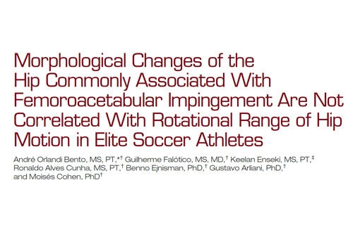 Morphological Changes of the Hip Commonly Associated With Femoroacetabular Impingement Are Not Correlated With Rotational Range of Hip Motion in Elite Soccer Athletes