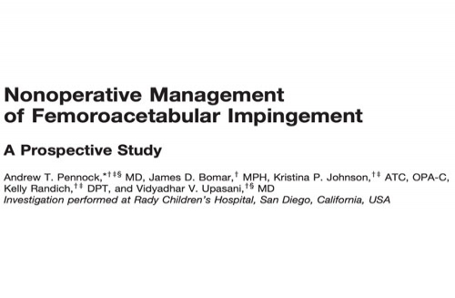 Nonoperative Management of Femoroacetabular Impingement. A Prospective Study
