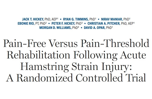 Pain-Free Versus Pain-Threshold Rehabilitation Following Acute Hamstring Strain Injury: A Randomized Controlled Trial