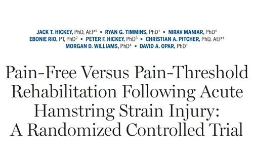 Pain-Free Versus Pain-Threshold Rehabilitation Following Acute Hamstring Strain Injury: A Randomized Controlled Trial